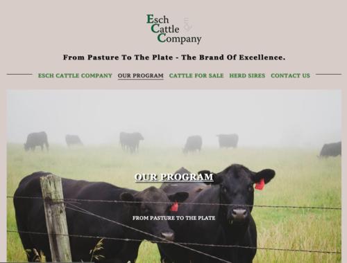 Esch Cattle Co. Unadilla, Nebraska